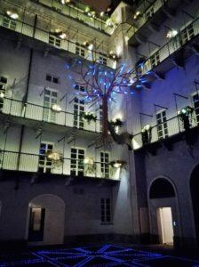 Cosa fare a Torino casa più bella del mondo