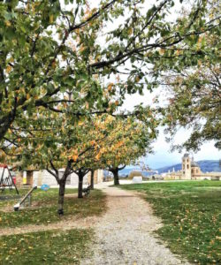 Cosa vedere a Urbino fortezza Albornoz