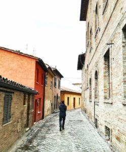 Cosa vedere a Urbino città