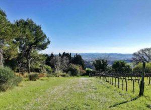 Cosa vedere a Urbino e dintorni Parco San Bartolo