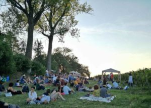 picnic in vigna al jazz festival di zola