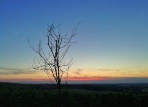 tramonto sui colli bolognesi al jazz festival di zola
