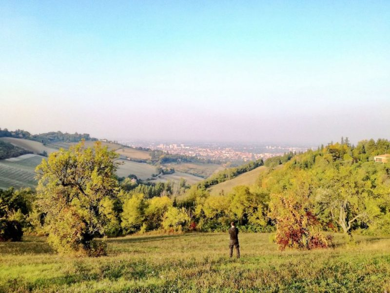 Dieci cose da vedere a Bologna poco conosciute