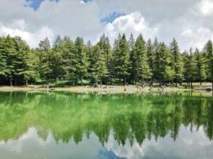 cosa vedere in Emilia-Romagna Lago della Ninfa