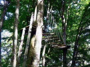 Percorsi avventura al parco avventura cerwood